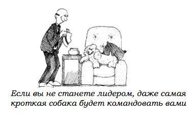 http://s3.uploads.ru/EY4Fq.jpg