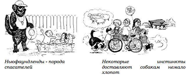 http://s3.uploads.ru/Epyvc.jpg