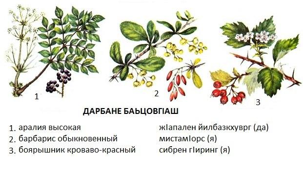 http://s3.uploads.ru/EzZBo.jpg