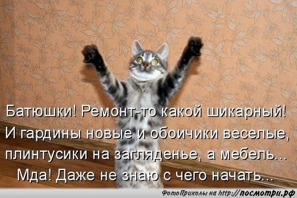 http://s3.uploads.ru/FQwXC.jpg