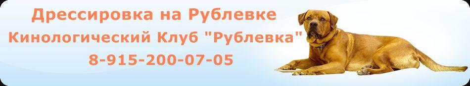 http://s3.uploads.ru/GFYWs.jpg
