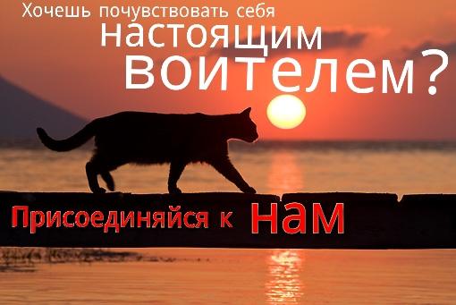 http://s3.uploads.ru/Gbir3.jpg