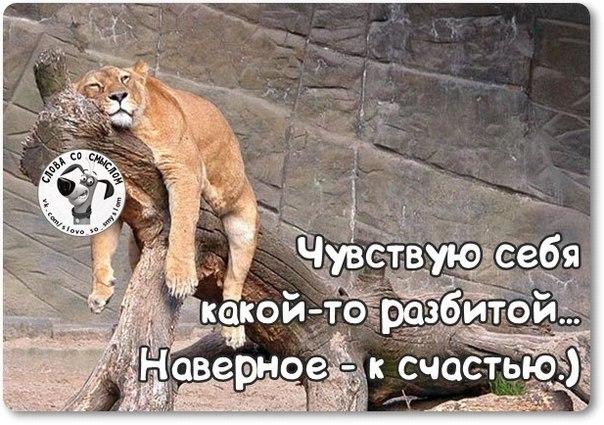 http://s3.uploads.ru/Gn7tW.jpg