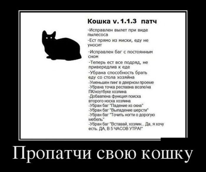 http://s3.uploads.ru/Hd80N.jpg