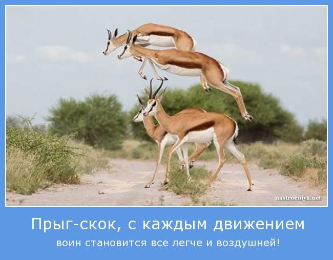 http://s3.uploads.ru/Hhgkl.jpg