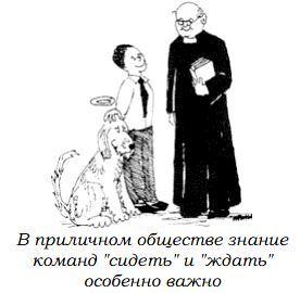 http://s3.uploads.ru/Il6BS.jpg