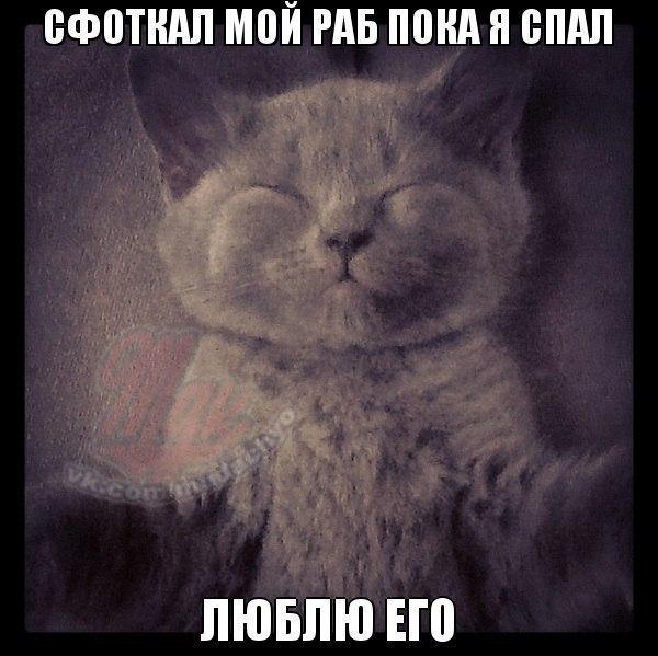 http://s3.uploads.ru/IyYmw.jpg