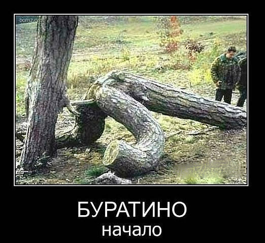 http://s3.uploads.ru/JQqtV.jpg