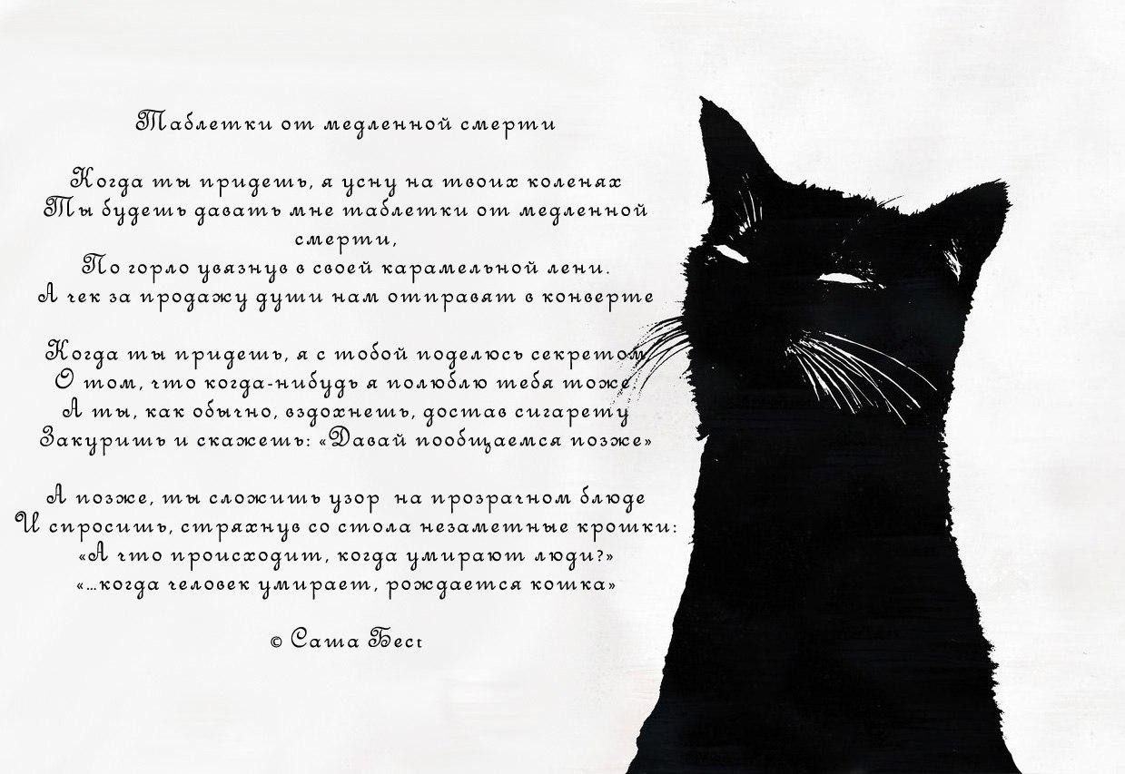 http://s3.uploads.ru/JdgyI.jpg