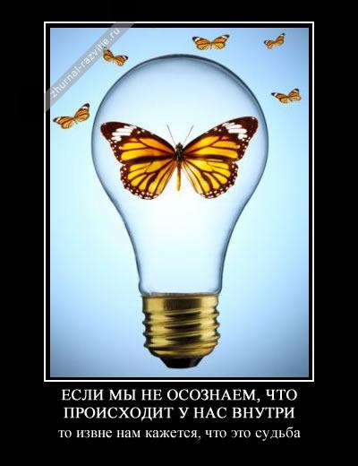 http://s3.uploads.ru/KUaJQ.jpg