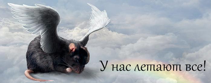 http://s3.uploads.ru/KmB1l.jpg