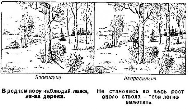 http://s3.uploads.ru/LIKra.jpg