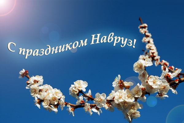 http://s3.uploads.ru/LPtM7.jpg