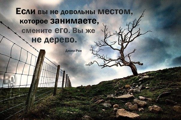 http://s3.uploads.ru/LjTfy.jpg