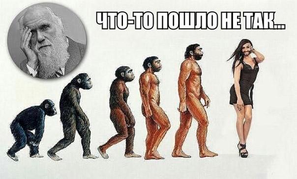 http://s3.uploads.ru/LmO0X.jpg