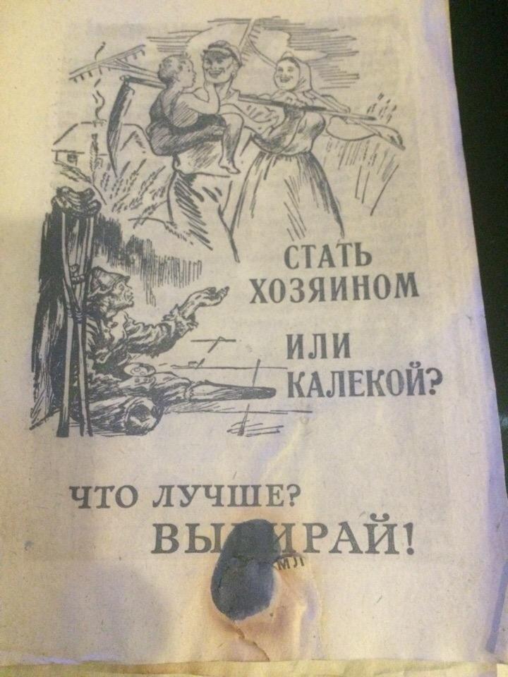 http://s3.uploads.ru/Lpd7g.jpg
