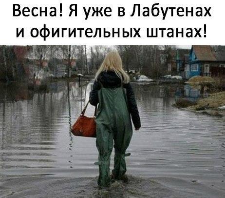 http://s3.uploads.ru/LvG5q.jpg