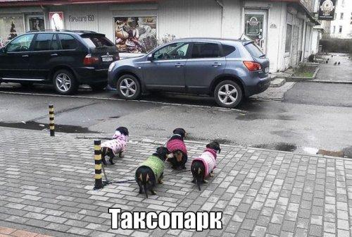 http://s3.uploads.ru/M3xIr.jpg