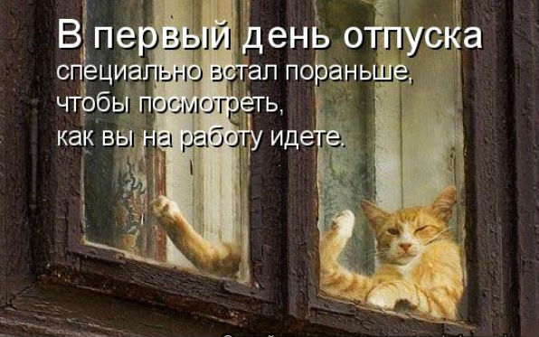 http://s3.uploads.ru/MWxbc.jpg