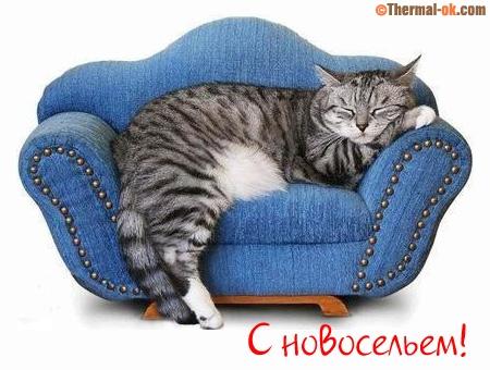 http://s3.uploads.ru/MqZYE.jpg