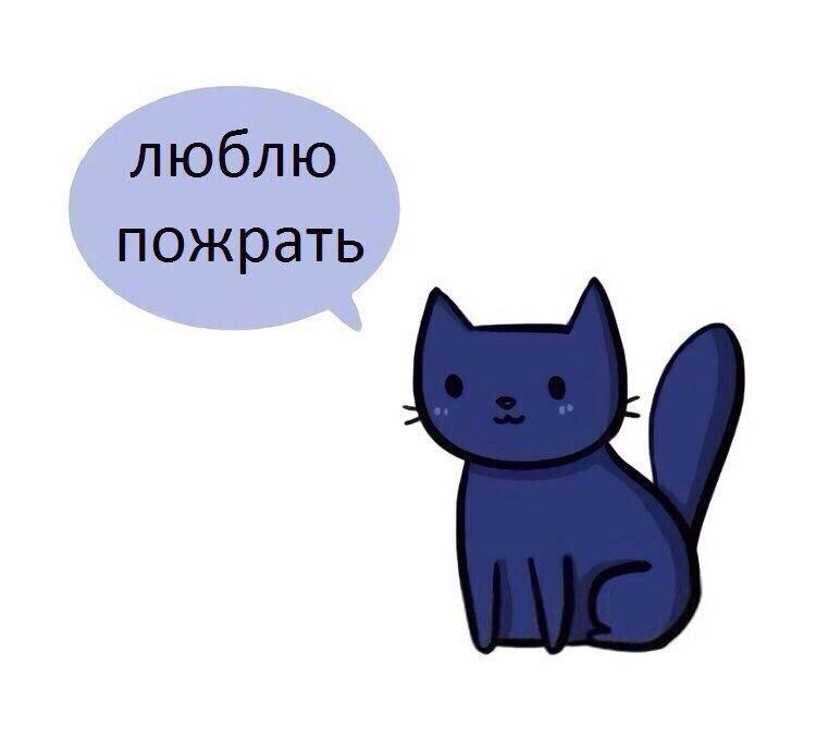 http://s3.uploads.ru/NzLKX.jpg