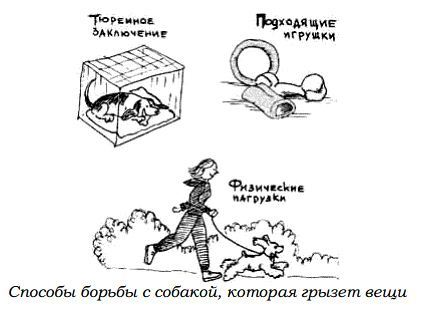 http://s3.uploads.ru/OLFU3.jpg