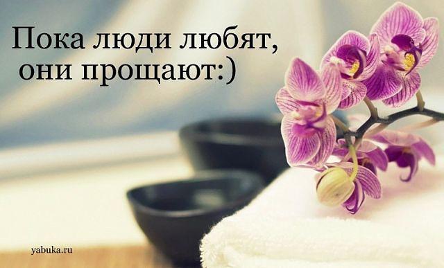 http://s3.uploads.ru/Oo50T.jpg