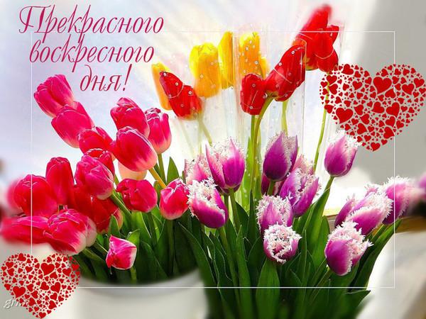 http://s3.uploads.ru/PbrL5.jpg