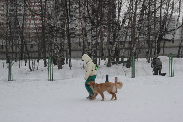 http://s3.uploads.ru/PzLlc.jpg