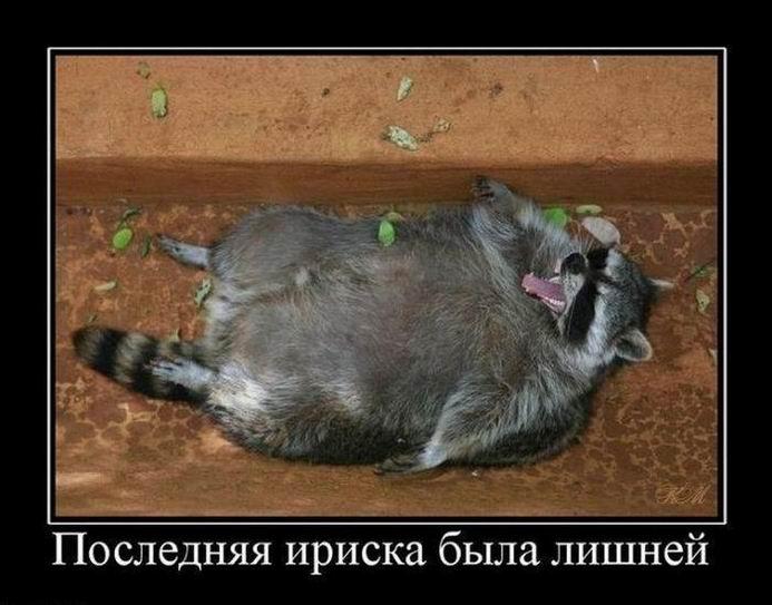 http://s3.uploads.ru/Q1tmU.jpg