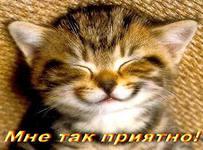 http://s3.uploads.ru/Q375j.jpg