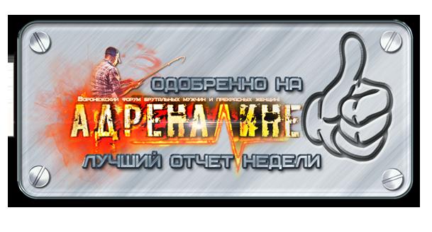 http://s3.uploads.ru/QXwoc.png