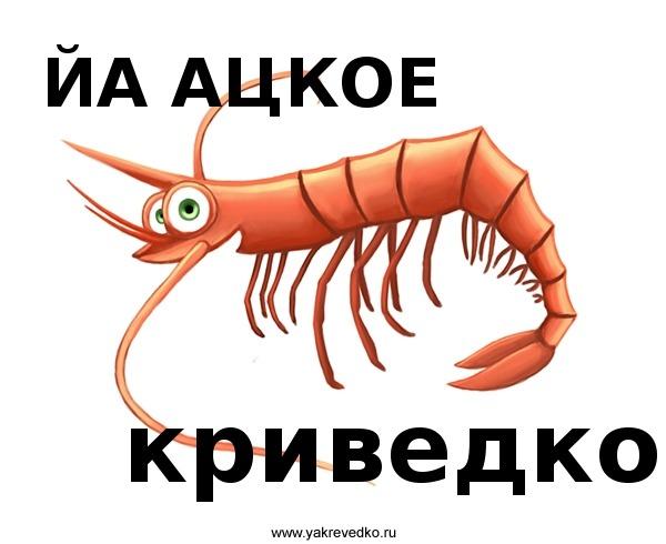 http://s3.uploads.ru/R7e0P.jpg