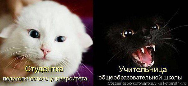 http://s3.uploads.ru/REKO6.jpg