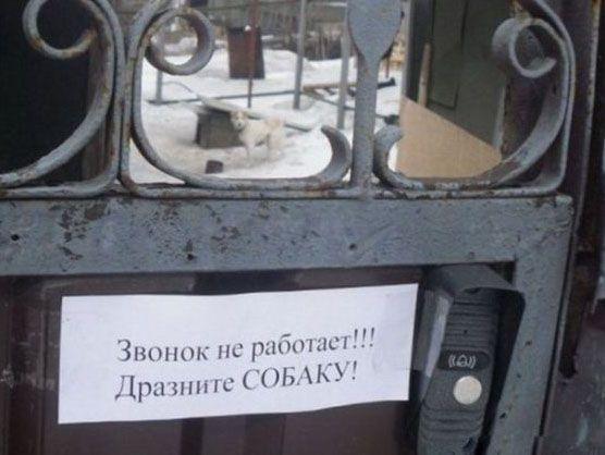http://s3.uploads.ru/RPua4.jpg