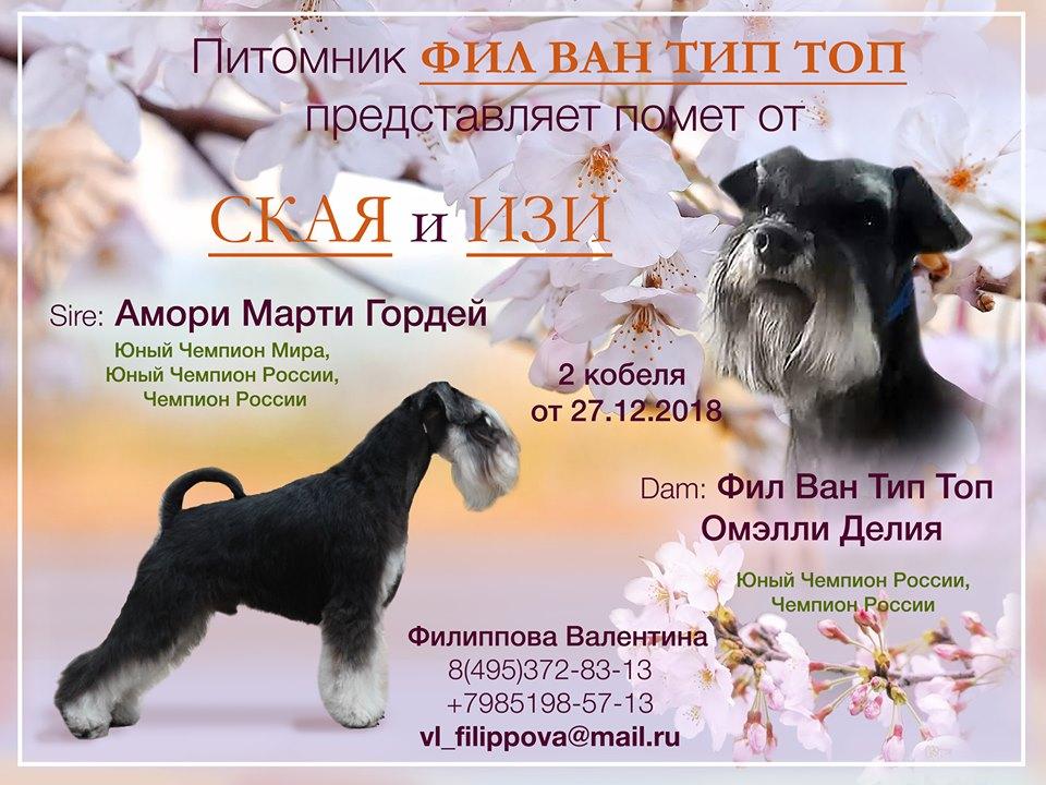http://s3.uploads.ru/Rgeub.jpg