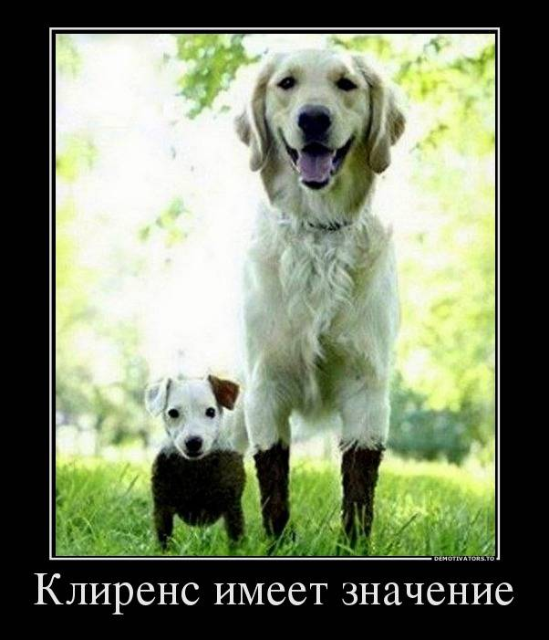 http://s3.uploads.ru/Sl4Tw.jpg