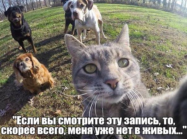 http://s3.uploads.ru/SqlF9.jpg