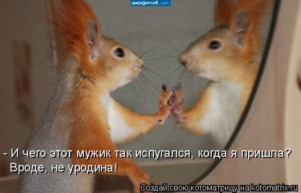 http://s3.uploads.ru/T7i0h.jpg