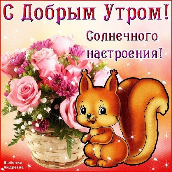 http://s3.uploads.ru/ThkKg.jpg
