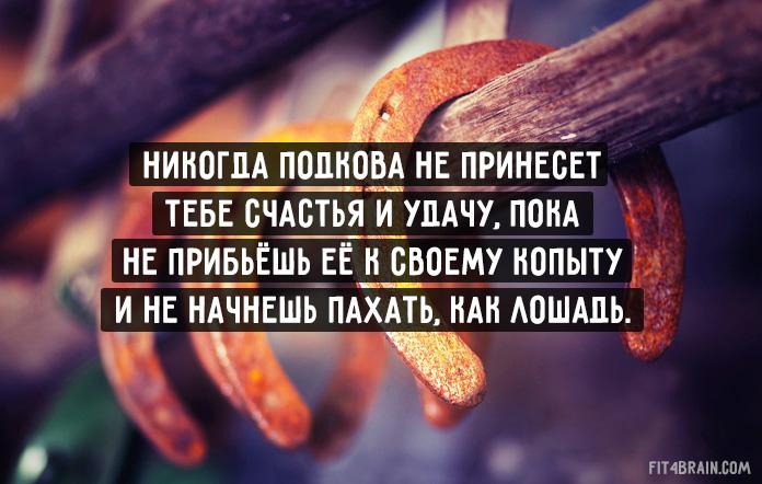 http://s3.uploads.ru/Tjtdg.jpg