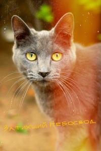 http://s3.uploads.ru/U8qIS.jpg