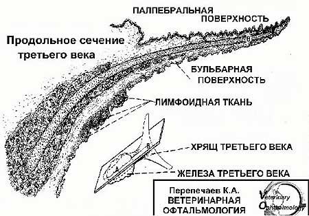 http://s3.uploads.ru/UISWL.jpg