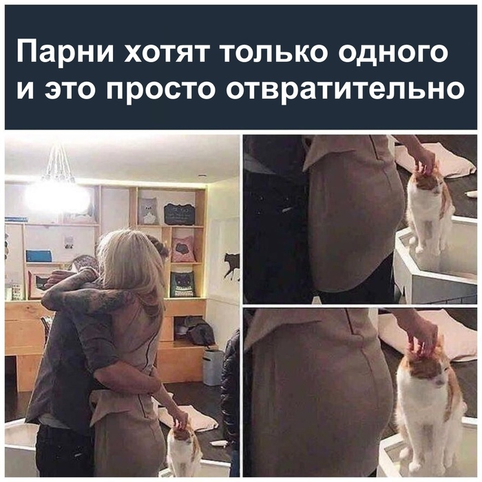 http://s3.uploads.ru/UJwYn.jpg