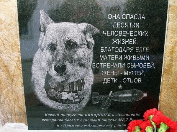 http://s3.uploads.ru/UoaHL.jpg