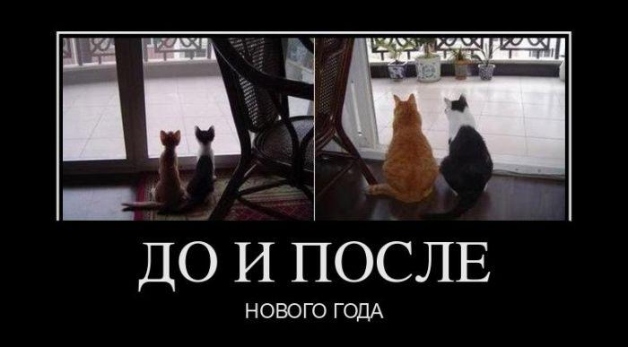 http://s3.uploads.ru/V1BqE.jpg