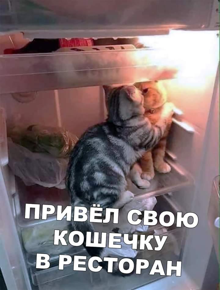 http://s3.uploads.ru/VFu4n.jpg