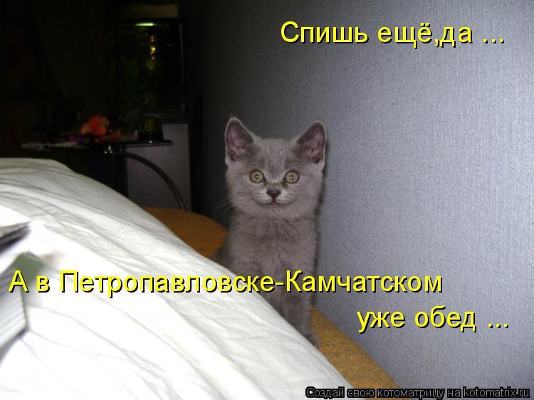 http://s3.uploads.ru/VcBX8.jpg