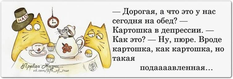http://s3.uploads.ru/WKxT0.jpg