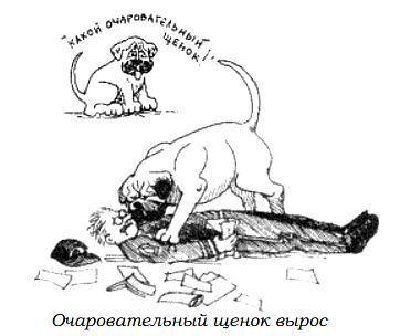 http://s3.uploads.ru/WZTYX.jpg